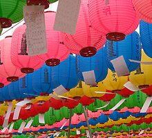 Birthday Lanterns - Beopju Temple, South Korea by Alex Zuccarelli