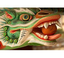 Dragon Head - Haein Temple, South Korea Photographic Print