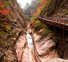 Autumn Gorge - Seoraksan National Park, South Korea by Alex Zuccarelli