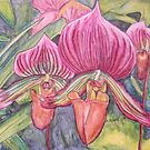 Pink Orchids II by Alexandra Felgate