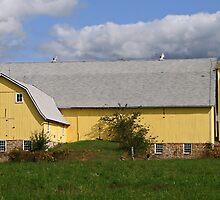 ..yellow barn.. by Lynne Prestebak