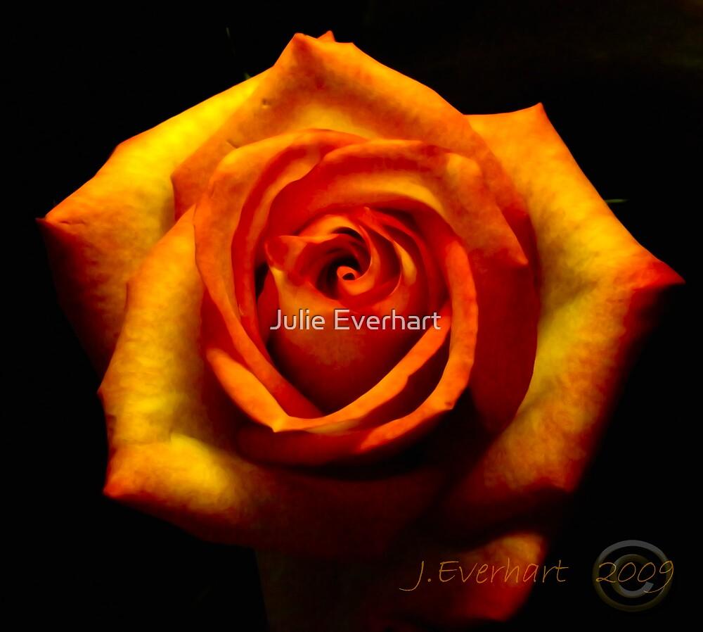 Fire Rose by Julie Everhart