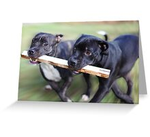 Builders Best Friends Greeting Card