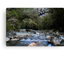 Cledau River,Fiordland National Park Canvas Print