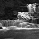 Stupid Falls in Black and White.  by Matt Benson