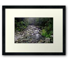 Small stream near the Cascade, South Westland Framed Print
