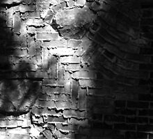 Another Brick in the Wall by Jon  Johnson