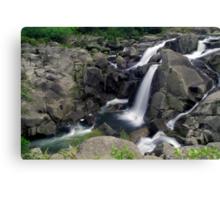 Mclaren falls, Tauranga Canvas Print