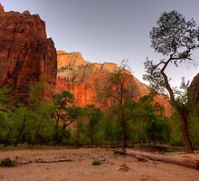 Early Morning Solitude At Zion ©  by © Hany G. Jadaa © Prince John Photography
