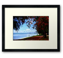 Under The Flame Trees Framed Print
