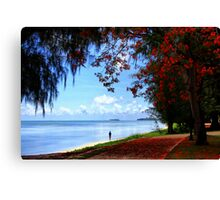Under The Flame Trees Canvas Print