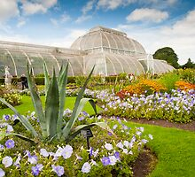 A Taste of the Exotic: Palm Houses Kew Gardens London UK by DonDavisUK