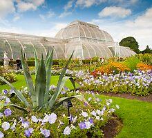 A Taste of the Exotic: Palm Houses Kew Gardens London UK by DonDavisUK