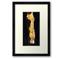 Homage to Petra Framed Print