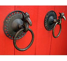 Couple of Knockers Photographic Print