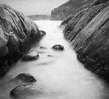 Cape Spencer by Darryl Leach
