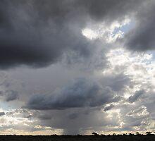 Nullarbor storm by AndrewBentley