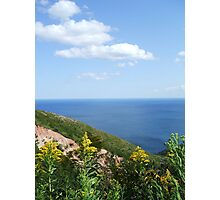 Cape Breton - Golden Rod Photographic Print