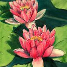 Water Lilies by Sarah  Mac