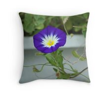 Barbs Beauty Throw Pillow