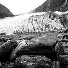Franz Joseph Glacier by Geoff Smith