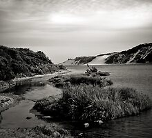 Powlett River Inlet  by Christine  Wilson Photography