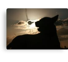Silhouette Pooch Canvas Print