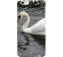 elegance 1 iPhone Case/Skin
