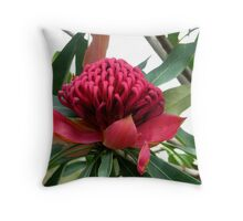 Waratah Throw Pillow