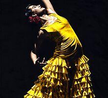 Un Momento Intenso del Flamenco by Richard Young