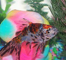 Fishy by Jonice