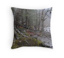 Smoky Mountains National Park, Tennessee Throw Pillow