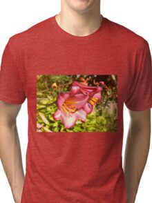 Two Beautiful Red Lilies Tri-blend T-Shirt