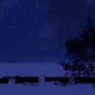 A Starry Night in Winter by Johanne Brunet