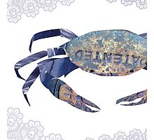 Rusty Blue Crab & Lace Mashup Photographic Print