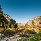 kings canyon valley by peterwey