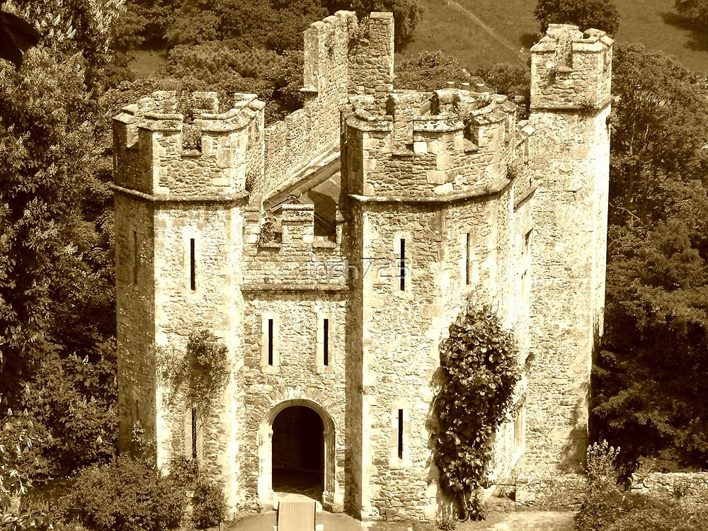 The Gatehouse, Dunster Castle by trish725