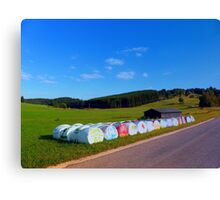 Hayballs along the road | landscape photography Canvas Print