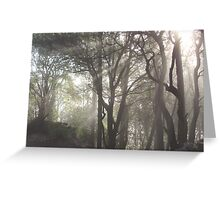 Nature's Rays Greeting Card