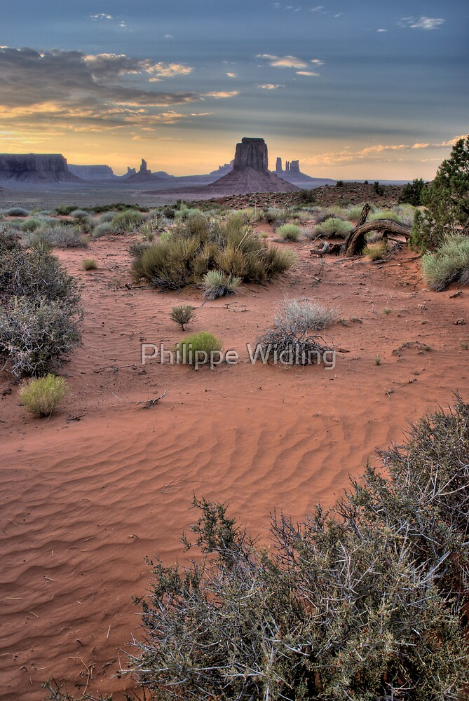 Monument Valley Evening by Philippe Widling