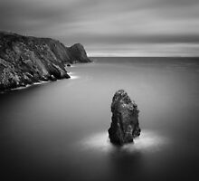 Donegal Sea Stack by Darren Brown