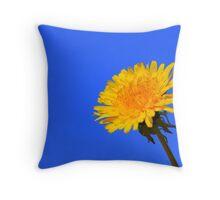 Dandelion in Sun Throw Pillow