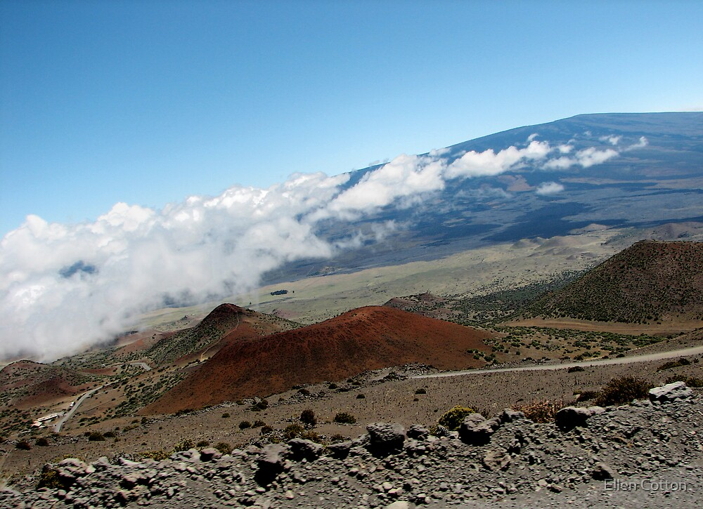 View from Mauna Kea by Ellen Cotton