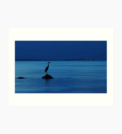 The evening heron Art Print