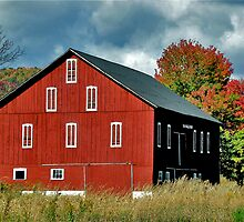 Red Barn in Autumn by Lois  Bryan