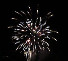Flaming Fireworks by SplatterPics