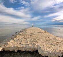 Salton Sea by Hugh Smith