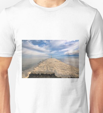 Salton Sea Unisex T-Shirt