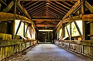 Covered Bridge by Evelina Kremsdorf