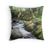 Minnehaha falls gorge 2 Throw Pillow
